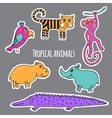 Set tropical animals vector image