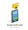 Smartphone credit card payment vector image vector image
