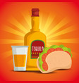 taco with tequila traditional mexican food vector image