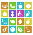 Colorful fruit icon set vector image