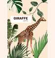 giraffe baparty invitation vector image