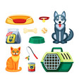pet shop set assortment for cat and dog toy vector image vector image