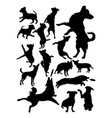 silhouette dogs vector image
