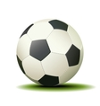 Soccer Ball Isolated on a White Background vector image vector image