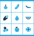 vegetable icons colored set with apple gherkin vector image