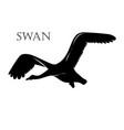 black swan logo silhouette vector image vector image