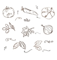 Doodle Vegetables sketch vector image vector image