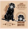 english mastiff - set for t-shirt logo vector image vector image