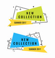 new collection summer 2017 promotional vector image