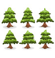 pine trees and firs collection vector image vector image