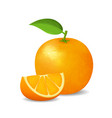 realistic detailed 3d whole orange and slice vector image