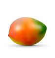 realistic mango isolated on white background vector image vector image