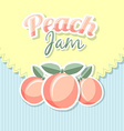 Retro peach jam vector image