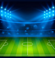 soccer stadium football arena field with bright vector image vector image