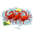 crabs with rosemary and lemon on ice cubes vector image