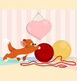 kitten playing with balls vector image