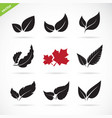 leaves icon set on white background vector image vector image
