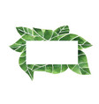 monstera leaves with rectangle copy space frame vector image