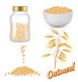 oatmeal set realistic vector image