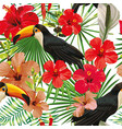 toucan leaves and flowers seamless pattern white vector image vector image