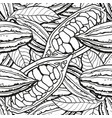 chocolate cocoa bean seamless pattern - colorless vector image