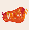 hello autumn autumn leafs on background flat vector image