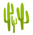 mexican cactus plant cacti flora in mexico vector image