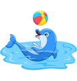 Playful Dolphin vector image vector image
