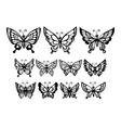 set silhouette wonderful butterflies vector image