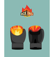 Boxing gloves fire vector image vector image