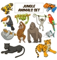 Cartoon jungle animals set vector image
