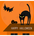 Cat arch back Kitty on roof Yellow eyes fangs curl vector image vector image