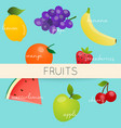 cute bright colors fruits collections healthy vector image