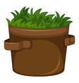 Grass growing in the pot vector image vector image