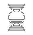 human dna symbol vector image vector image