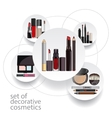 infographics for decorative cosmetics vector image vector image
