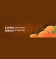 pumpkin over wooden texture autumn banner vector image