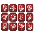 Chinese zodiac signs vector image vector image