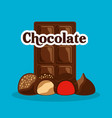 chocolate bar and candies with cream chips vector image vector image