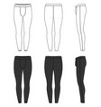 clothing set of training tights vector image vector image