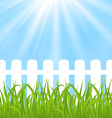 Fresh green grass over wood fence background vector image