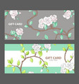 gift card with blooming roses vector image vector image