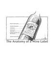 hand drawn of a wine bottle vector image vector image