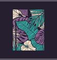 hand drawn tropical t-shirt vector image