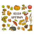 hello autumn poster with isolated thematic vector image