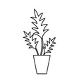 line nature plant with leaves inside flowerpot vector image vector image