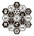 set of honey emblems vector image vector image