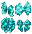 set with cyan bows vector image vector image
