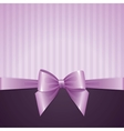 violet background with bow vector image vector image