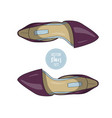 fashion color womens shoes vector image vector image